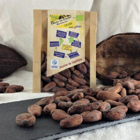 Fèves de cacao crues